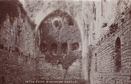 Postcard In The Keep Chepstow Castle By EG Ballard Photographer Of Welsh Street Chepstow RP My Ref  B12108 - Monmouthshire