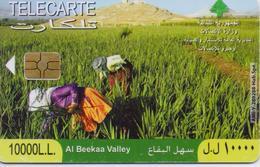 LEBANON(CHIP) AL BEEKAA VALLEY- 2008-USED(bx1) - Libanon