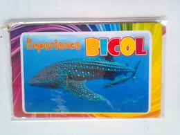 Philippines  Experience Bicol - Tourism