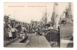 D  62  - Cpa - BOULOGNE  SUR  MER - DEBARQUEMENT  DU  POISSON -   5540  MA - Boulogne Sur Mer