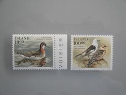 1989 Islande  Yv  650/1  **  Oiseaux Birds  Scott 671/2  Michel 697/8 SG 726/7 Facit 734/5 - Oiseaux