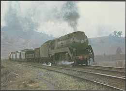 New South Wales Government Railways No 3801 - Loco 100 Postcard - Trains