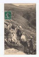 Puy De Dôme. Mont Dore. Excursion Au Pic Du Sancy. Touristes Sur Mulets, ânes. (2785) - Le Mont Dore