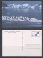 TAAF 1989 Max Douguet Postal Stationery N° 1 Unused (38728A) - Postwaardestukken