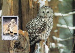 2003 - BIRD - OWL - URAL OWL (Strix Uralensis) - Maximumkarten (MC)