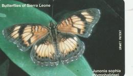 Sierra Leone - Butterflies - Junonia Sophia - Sierra Leone