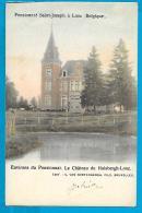 Looz - Le Château Du Hulsbergh-Looz - Borgloon