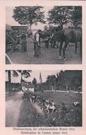 Armée Suisse, Mobilisation Guerre 14-18, Cavalerie (2053) - Weltkrieg 1914-18