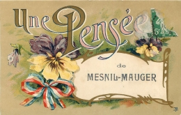 MESNIL MAUGER UNE PENSEE - France