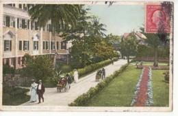 Etats Unis - Floride - Palm  Beach - Walk And Gardens - The Royal Poinciana     : Achat Immédiat - Palm Beach