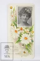 Old Modernist Trading Card / Chromo Flower -  White Daisy & Model - Jaime Boix Nº 17 - Documentos Antiguos