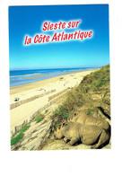 Cpm - Sieste Sur La Côte Atlantique - Rhinocéros - 2007 - - Rhinocéros