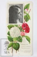 Old Modernist Trading Card / Chromo Flower -  Camellia & Model - Jaime Boix Nº 27 - Documentos Antiguos