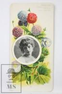 Old Modernist Trading Card / Chromo Flower - Cineraria & Model - Jaime Boix Nº 89 - Documentos Antiguos
