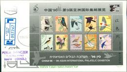 Israel FDC 1996, Internationale Briefmarkenausstellung CHINA '96, Peking: Singvögel, Oiseaux, Birds, Block 53 (2-150) - FDC