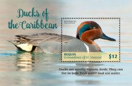 Bequia Grenadines Of St. Vincent  2018 Birds Ducks Of Caribbean I201805 - St.Vincent E Grenadine