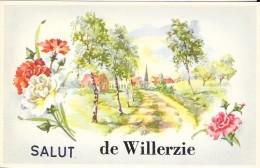 WILLERZIE -  SALUT DE - Zonder Classificatie