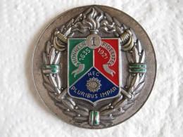 Médaille 1er Régiment Etranger De Cavalerie. - Army & War