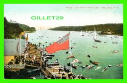 HALIFAX, NOVA SCOTIA - REGATTA ON NORTH WEST ARM -  MONTREAL IMPORT CO - - Halifax
