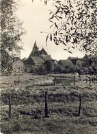 DENDERBELLE - Algemeen Zicht Met Kerk - Lebbeke