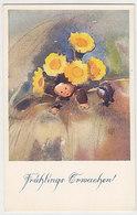 Frühlingserwachens - Sign. Mili Weber       (P-137-41230) - Altre Illustrazioni