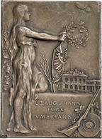 Medaillen Deutschland: Troppau (Opava): Franz Joseph I. 1848-1916: Ag Plakette 1902 Auf Das I. Öster - Deutschland