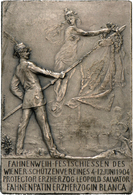 Medaillen Deutschland: Wien: Franz Joseph I. 1848-1916: Ag Plakette 1904 Auf Das Fahnenweih-Festschi - Germany
