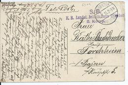 Zichtkaart Van HEPPENEERT (Maaseik) Met Duitse Brugstempel MAESEYCK En Eenheidsstempel - Oorlog 14-18
