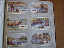 ZOETWATERVISVANGST Pêche En Rivière Liebig Série Reeks 6 Chromos Nederlandse Taal Trading Card Chromo - Liebig