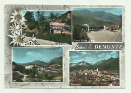 SALUTI DA DEMONTE - VEDUTE VIAGGIATA FG - Cuneo