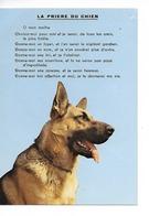 La Priere Du Chien - Berger Allemand/ CPM Neuve N° 3129 Imprimée En Suisse / Un Trou De Punaise Petit Prix - Hunde