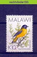 Nev020 FAUNA VOGELS BIRDS VÖGEL AVES OISEAUX MALAWI 1994 Gebr/used - Birds