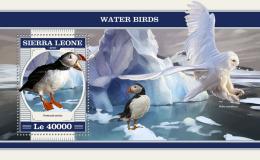 SIERRA LEONE 2018 MNH** Penguin Pinguin Water Birds S/S - OFFICIAL ISSUE - DH1817 - Pinguïns & Vetganzen