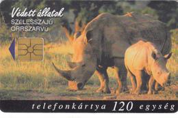 Hungary Phonecard - Rhino -  Superb Used - Hongrie