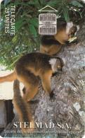 Madagascar Phonecard - Lemur -  Superb Used - Madagascar