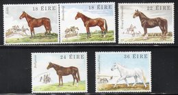 IRLANDA 1981 - FLORA E FAUNA - CAVALLI  - SERIE COMPLETA  - MNH ** - 1949-... Repubblica D'Irlanda