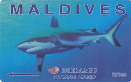 Maldives Phonecard - Shark -  Superb Used - Maldives