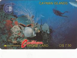 Cayman Islands Phonecard - Reef -  Superb Used - Cayman Islands