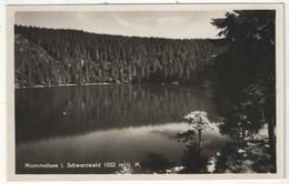 MUMMELSEE I. Schwarzwald - Autres