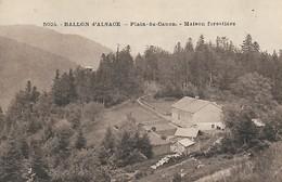 CARTE POSTALE ORIGINALE ANCIENNE : LA  MAISON FORESTIERE DU PLAIN DU CANON BALLON D'ALSACE VOSGES (88) - Sonstige Gemeinden