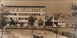 Našice 1962 ( 20,50 X 10,50 Cm ) - Croatia