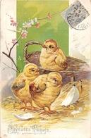 ¤¤   -  ILLUSTRATEUR   -  Joyeuses Pâques  -  Poussins , Panier , Fleurs    -  ¤¤ - Pâques