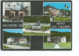Mont Les Champs Souvenir ( VW Cox ) - Vresse-sur-Semois