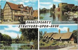Shakespeare's - Stratford-Upon-Avon - Stratford Upon Avon