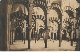 Cordoue - Catedral - Interior De La Mezquita - Espagne