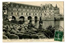 CPA 37 Indre Et Loire Chenonceaux Le Château Troupeau De Moutons Animé - Chenonceaux