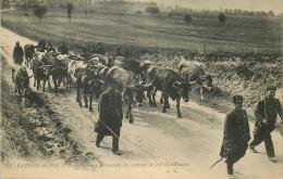 CP GUERRE 1914 TERRITORIAUX FRANCAIS DU SERVICE DE RAVITAILLEMENT - TROUPEAU DE VACHES - Guerre 1914-18