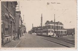 Haacht Station Tram - Haacht