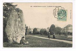 CPA (49) Cholet. Le Jardin Public .Le Menhir. Animation. (099) - Cholet