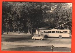 Tram Bus Pullman Auto Cars Wagen Voitures Old Photo - Automobili